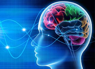 Neurofeedback - Biofeddback